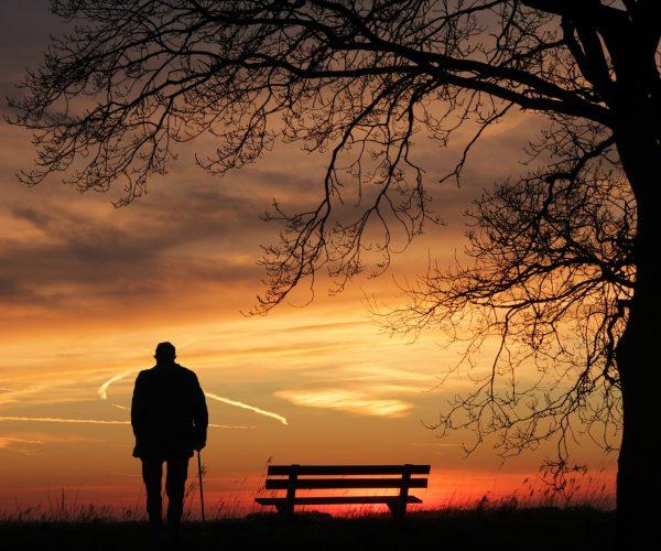 Sentarse en un banco y tener un abrigo al lado. Aunque tuviera frío, el abuelo era honesto y lo devuelve a su dueño. Enfermo de Alzheimer esta perdido